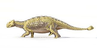 Photorealistic τρισδιάστατη απόδοση ενός Ankylosaurus, τον πλήρη σκελετό που επιβάλλεται με. Στοκ Εικόνες