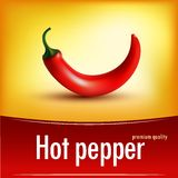 Photorealistic ilustracja chili w wektorze Zdjęcie Stock