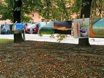 Photos accrochant sur des pinces à linge en parc à Lviv Photo stock