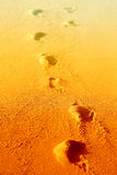 Photos background with bright sand Stock Images