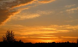 Beautiful summer sunset Royalty Free Stock Images