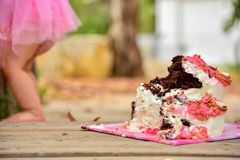 Cake-smash for my one year old princess royalty free stock photo