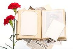 Photos de cru et deux fleurs rouges d'oeillet photos stock