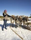 Photos de fille des cerfs communs à un téléphone portable Photos stock