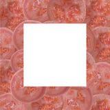Photos de fruit sur un fond blanc Photographie stock libre de droits
