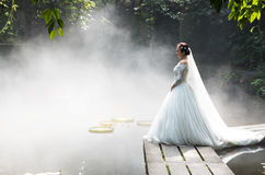 Photos de mariage de belle jeune mariée Images libres de droits