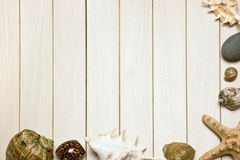 Photos de vue des seashells images stock