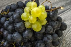 Photos des raisins noirs sur des photos de plancher, noires et vertes en bois de raisins dans le plat, les grands raisins noirs Photographie stock