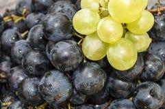 Photos des raisins noirs sur des photos de plancher, noires et vertes en bois de raisins dans le plat, les grands raisins noirs Photos stock