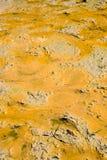 Photos du sol avant de planter le riz Photographie stock libre de droits