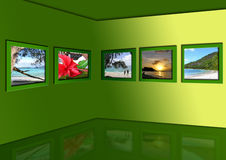 Photos of exotic tropics Stock Photos