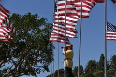 Photos femelles supérieures de tir de photographe à un affichage commémoratif de drapeau des Etats-Unis photos libres de droits