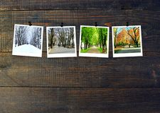 Photos of four seasons attached to dark wooden wall. Seasons on dark background stock photos
