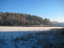 Photos with landscape background of a winter forest and frozen lakes in the agricultural landscape of Lithuania Royalty Free Stock Images