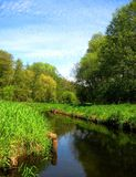 Photos with landscape summer background of river prospects with coastal greenery. Photos from the European landscape summer background greenery, river prospects Royalty Free Stock Photography
