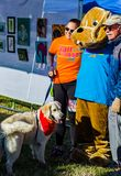 Photos with the Mascot of the Annual Roanoke Valley SPCA 5K Tail Chaser. Roanoke, VA – March 23rd: Photos with the mascot at the Annual Roanoke Valley royalty free stock photography