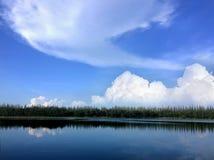 Photos naturelles de paysage avec de beaux nuages blancs, cieux clairs et arbres Images libres de droits