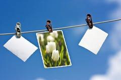 Photos s'arrêtant sur une corde Photos libres de droits
