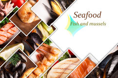 Photos of seafood with copy space Stock Photo