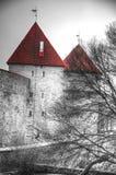 Photos of Tallinn Stock Photos
