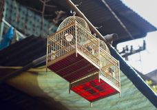 Photos of two bird cages. Stock Photo