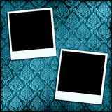 Photos On Wallpaper Royalty Free Stock Image