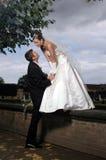 Photosession van het huwelijk in het klassieke park Stock Afbeeldingen