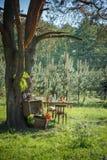 Photoshoot-Hochzeitsdekor im magischen Holz für ein liebevolles Paar Lizenzfreie Stockfotografie