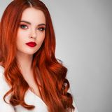 Gorgeous redhead girl Stock Photography