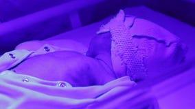 Phototherapy für neugeborenes stock footage