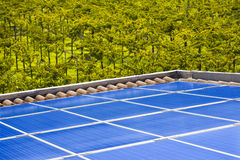 Photovoltaic. View of a roof with a production facility for photovoltaic electricity with the background of a vineyard Stock Photos