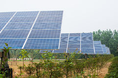 Photovoltaic cell array Royalty Free Stock Photo
