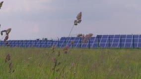 Photovoltaic elektrownia przeciw trawie i kolca polu zdjęcie wideo