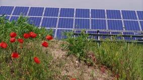 Photovoltaic krachtcentrale die groene energie, papaver produceren stock video