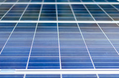 Photovoltaic panel Arkivbild