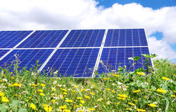 Photovoltaic panels and  flowers Royalty Free Stock Photos