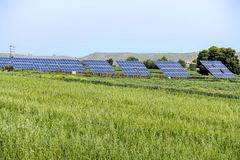 Photovoltaic panels in green field. Array of photovoltaic panels in green field stock images