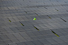 Photovoltaic panels solar field. Stock Photos