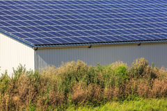 Photovoltaic Solar Panels on agricultural warehouses Stock Images