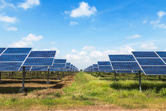 Photovoltaics module solar panels royalty free stock image