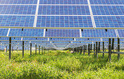 Photovoltaics  solar panels. In solar power station Stock Photo