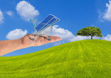 Photovoltaics solar panels in shopping trolley cart on hand with the tree on grass hill Stock Image
