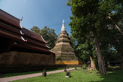 Phra That Chedi Luang is the tallest religious structure in Chi Royalty Free Stock Photo