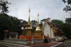 Phra den Doi tumg (พระธาต,ุด à¸à¸¢à¸•,ุง) Royaltyfria Bilder