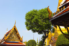 Phra Kaeo, Temple of the Emerald Buddha,Bangkok Thailand. Details Stock Images