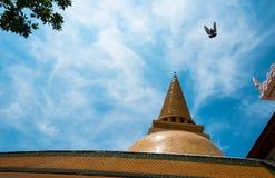 Phra Pathom Chedi Arkivfoton