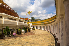 Phra Pathom Chedi, großes stupa bei Thailand Stockfotografie