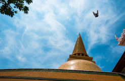Phra Pathom Chedi. Nakhonpathom ,Thailand Stock Photos