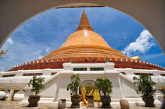 Phra Pathom Chedi Wat Suan Dok Nakhon Pathom    Thailand Stockbild