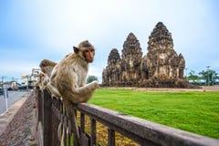 Phra Prang SAM Yot stock foto